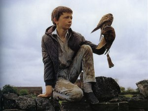Damn you Ken Loach! There's no such thing as mines and birds!
